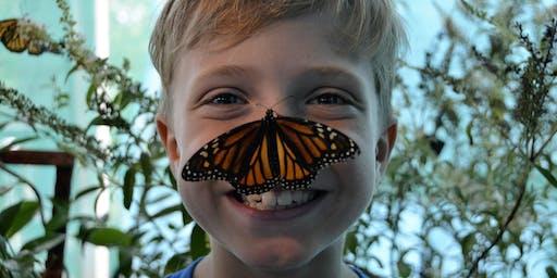 2019 Kiwanis Butterfly Festival in Southlake