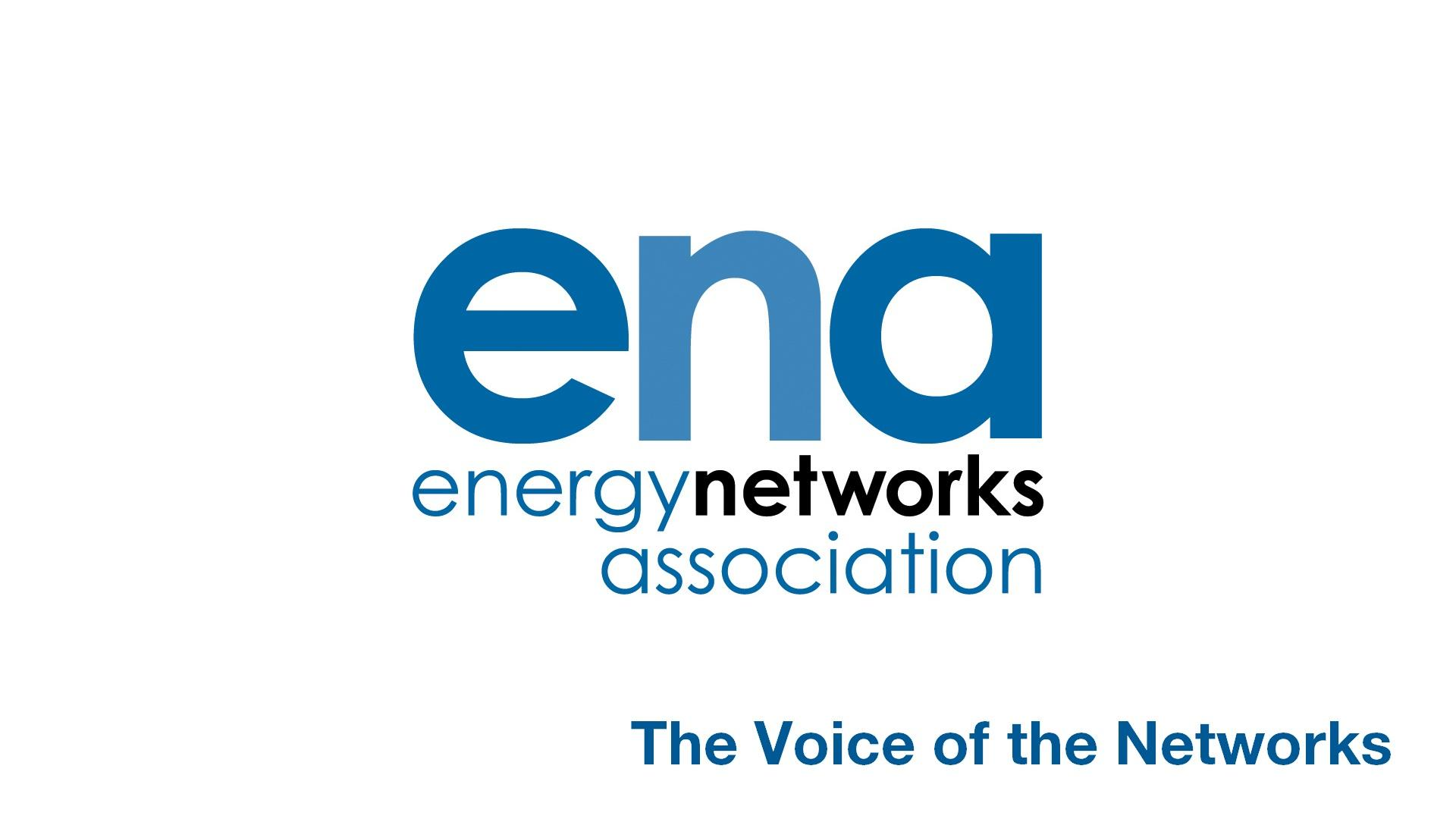 Electricity Network Innovation Strategy - London Stakeholder Workshop