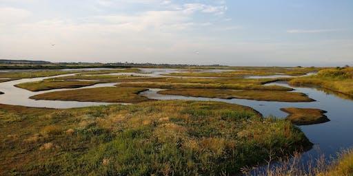 RSPB - Explore Havergate Island