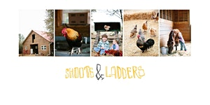 Christmas on the Farm - Shoots & Ladders - November...