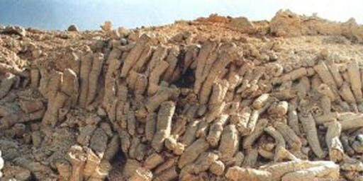 Carbonate Reservoirs: Muscat