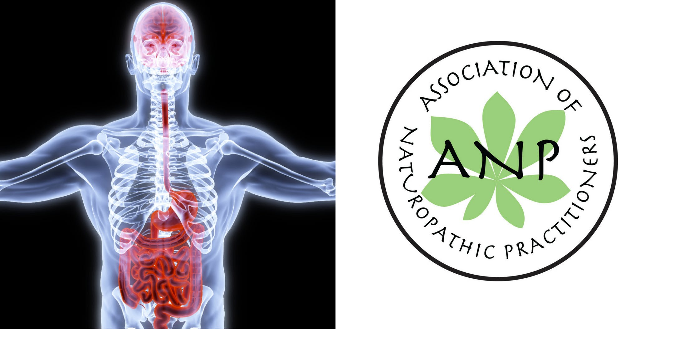 Gut-Brain-Microbiota Axis by Genova Diagnostics Thursday 20th September ANP Dublin