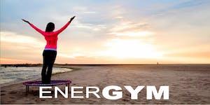 #EnerGYM - Bellicon Trampoline Trainer Ausbildung