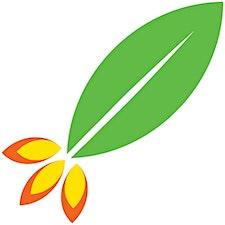 Rocket Seeder logo