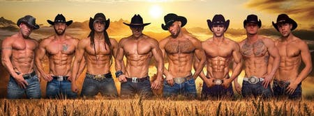 HUNKS - An All Male Revue