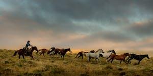 2020 November Ranches Workshop