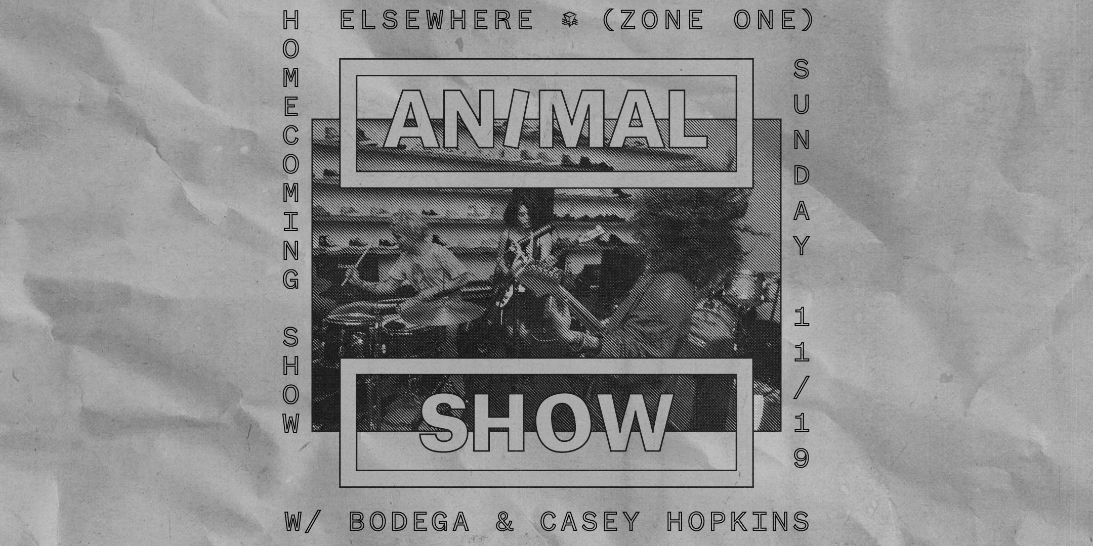 Animal Show (Homecoming Show!)