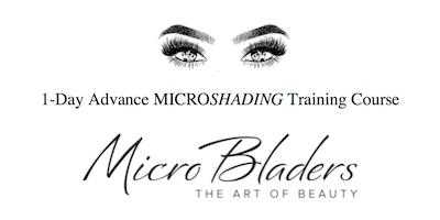 Las Vegas Advance Micro-Shading Training Course - 1-Day | $200 deposit locks your spot