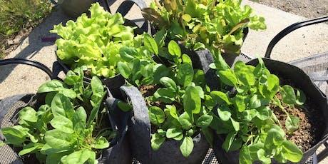 Container Gardening Secrets tickets