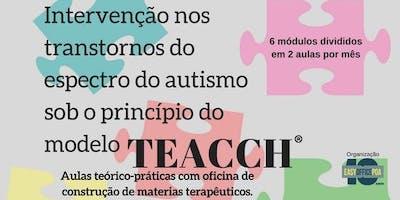 Intervenção nos transtornos do espectro do autismo sob o princípio do modelo TEACCH
