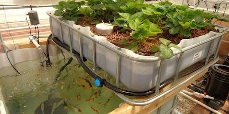 Learn to build an Urban Aquaponics system #GreenLab  tickets
