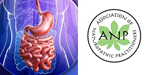 Gut Symposium a Journey Through the Microbiome,...