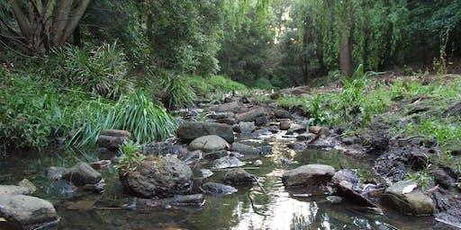 Binnamittalong Gardens Bushcare Volunteer Group meeting