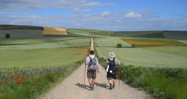 Camino Advice Evening