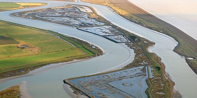 RSPB - Wildlife River Trips
