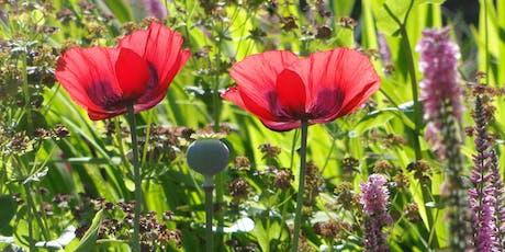Planning Planting Mells Walled Garden tickets