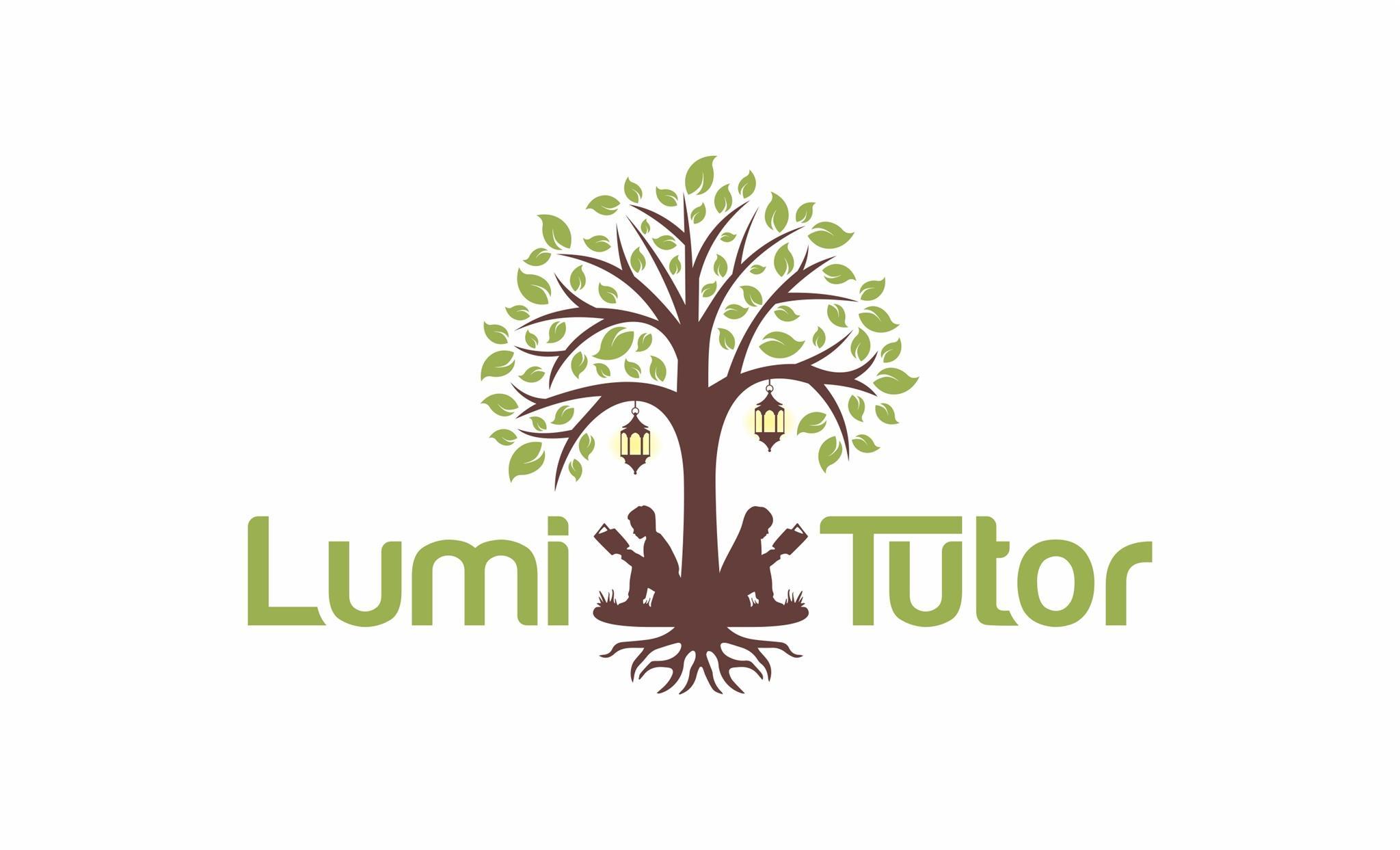 LumiTutor  photo
