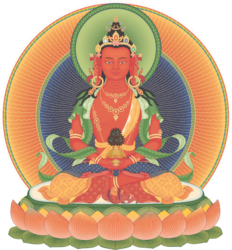 Monday Evening Meditation Series