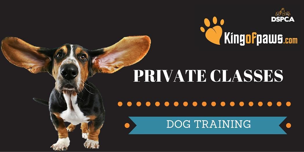 PRIVATE TRAINING CLASSES 2018