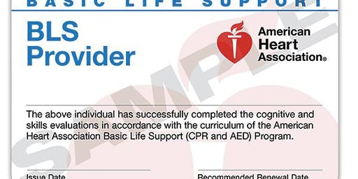 West Palm Beach area - BLS for Healthcare Professionals (AHA)