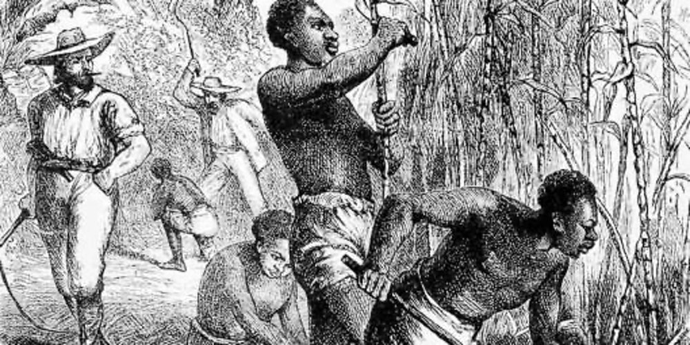 slavery in caribbean history Andrea stuart is author of sugar in the blood: a family's story of slavery and empire (alfred a knopf, january, 2013) the barbadoes mulatto girl engraving published in london, 1779 via wiki commons what kind of influence can a small caribbean island have had on the history of the united.