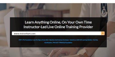 Salesforce Certification Training: Admin 201 and App Builder in Denton, TX