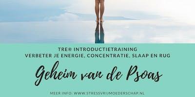 Verbeter je energie, concentratie, slaap en rug - TRE® Introductietraining