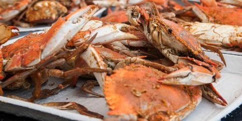 Unlimited Crab & Beer Festival (Day Trip from Brooklyn, NY to Baltimore, MD)