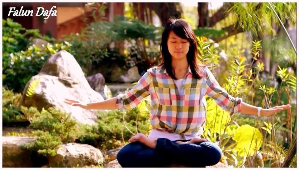 Falun Dafa: Gratis meditatielessen in Domein