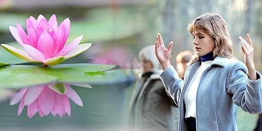 Falun Dafa: Gratis meditatielessen, Kapermolen Hasselt