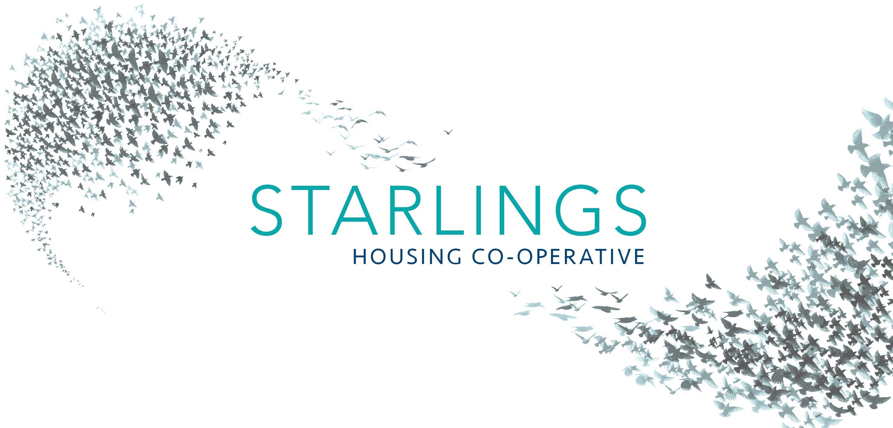 Tour and Design Workshop with Ecomotive with Starlings Housing Cooperative