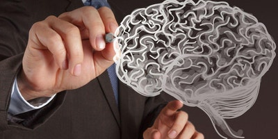Emotional Intelligence & the Neuroscience of Performance Management