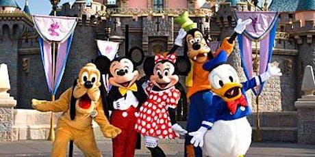 Disneyland Tour entradas