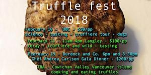 Truffle Foray