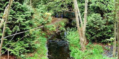 event in Seattle: Duwamish Alive Work Party - Longfellow Creek