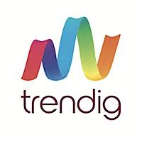 trendig technology services GmbH