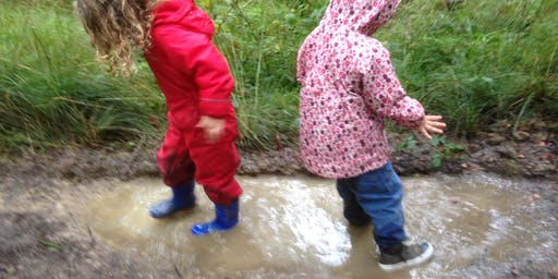 Toddler Forest Play