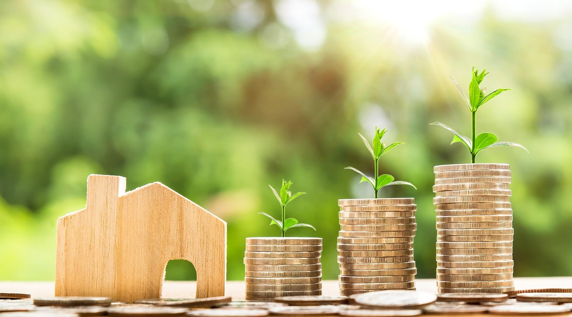 Real Estate Investing - Garland TX (-)