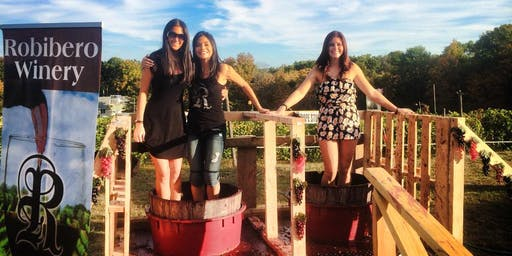 Grape Stomping Festival at Robibero Winery