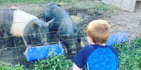 School Tours @ Willow City Farm tickets