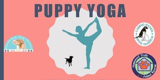 Doodlebug Puppy Yoga