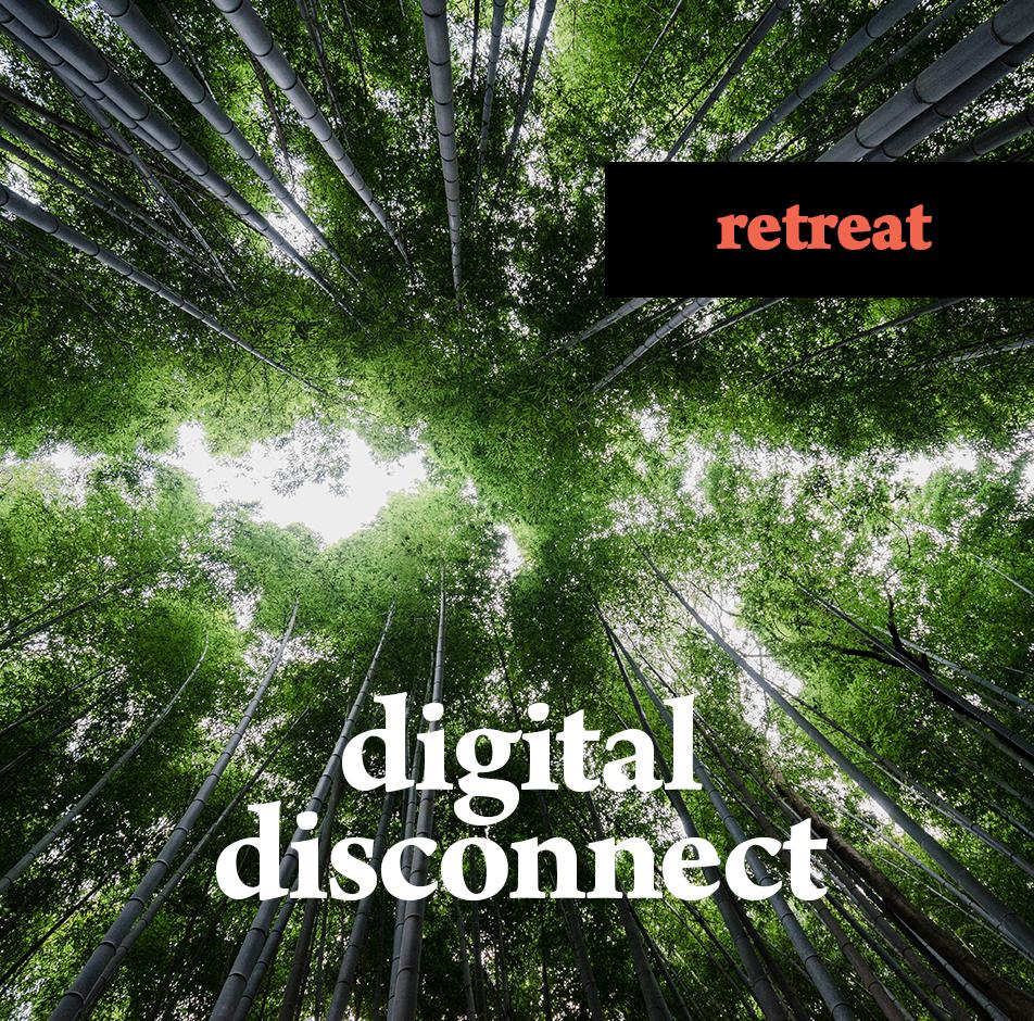 11th Bi-Annual Digital Disconnect Marketing R