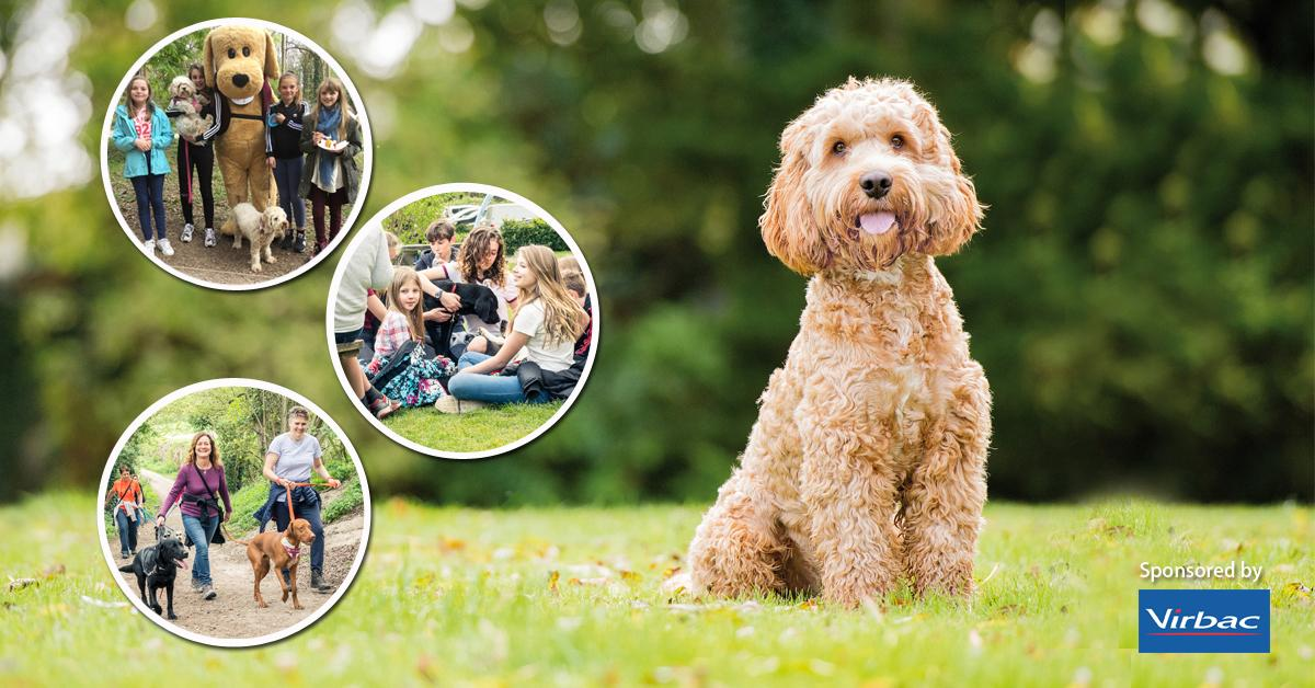 The Great British Dog Walk 2018 - Eastnor Cas