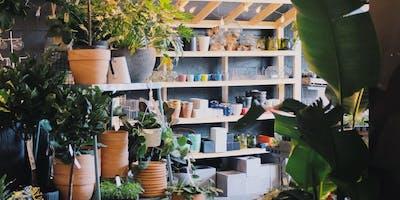 Green Your Thumb: Houseplant Workshop