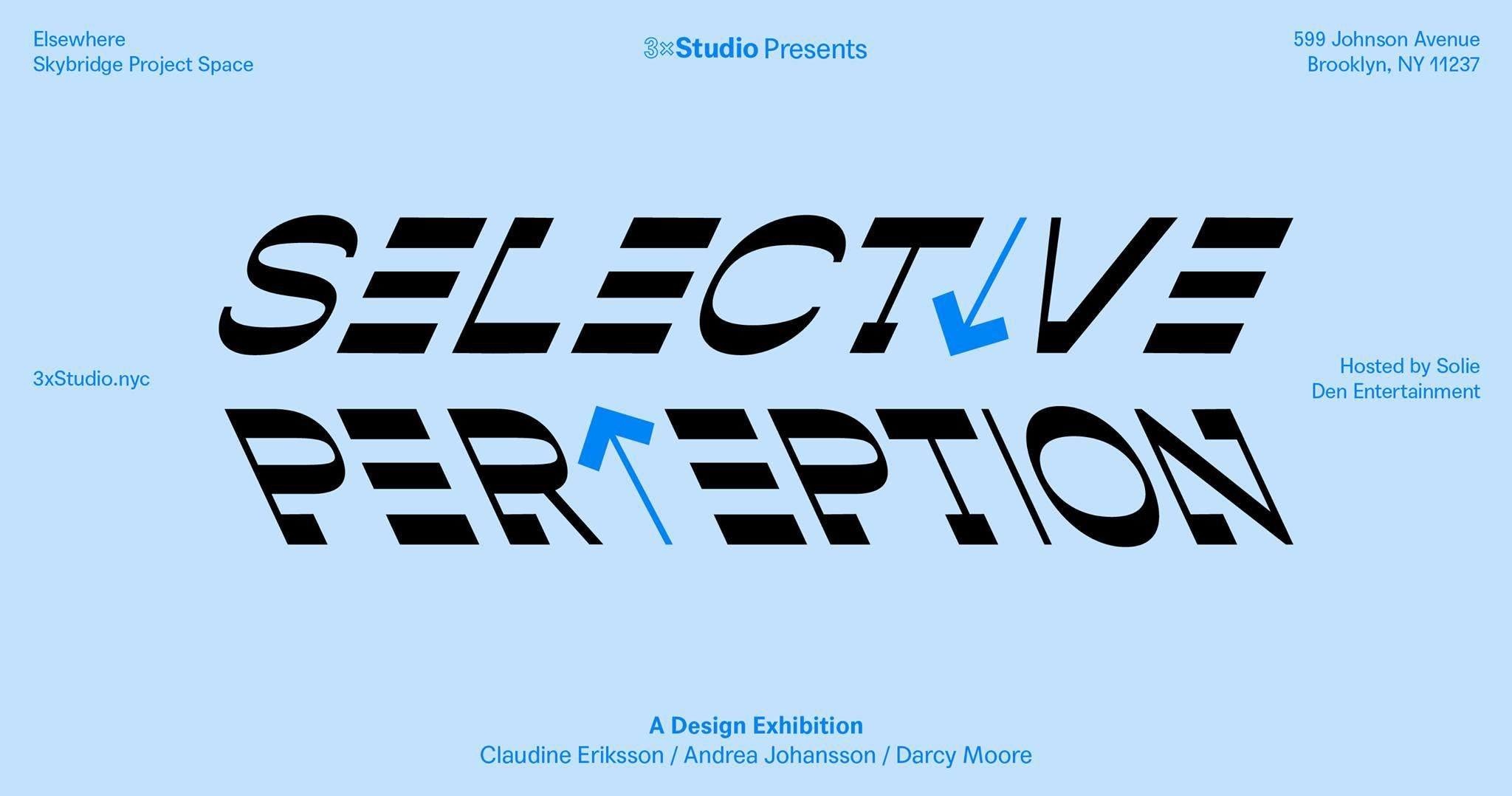 Selective Perception Closing Party