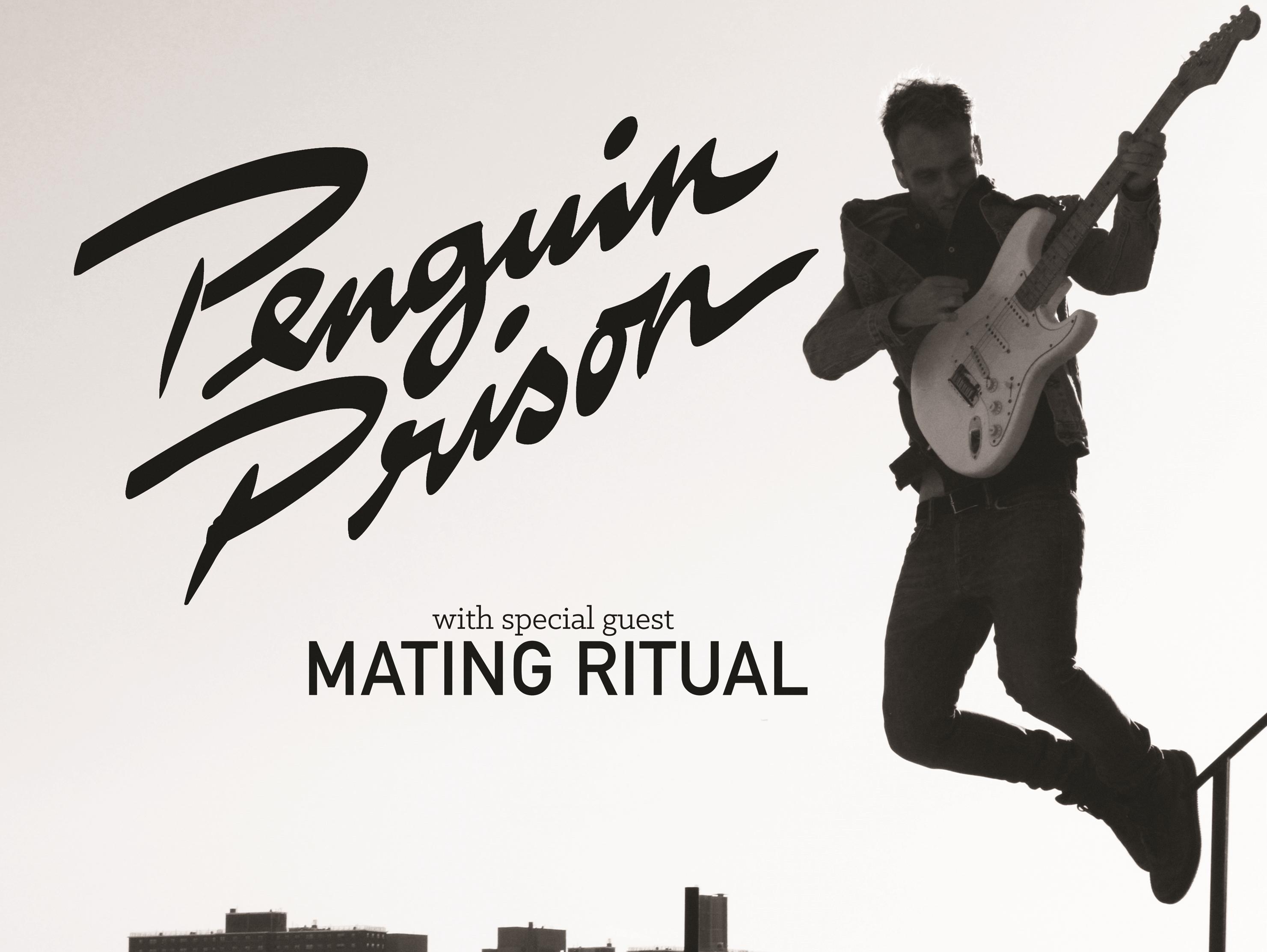 Penguin Prison / Mating Ritual