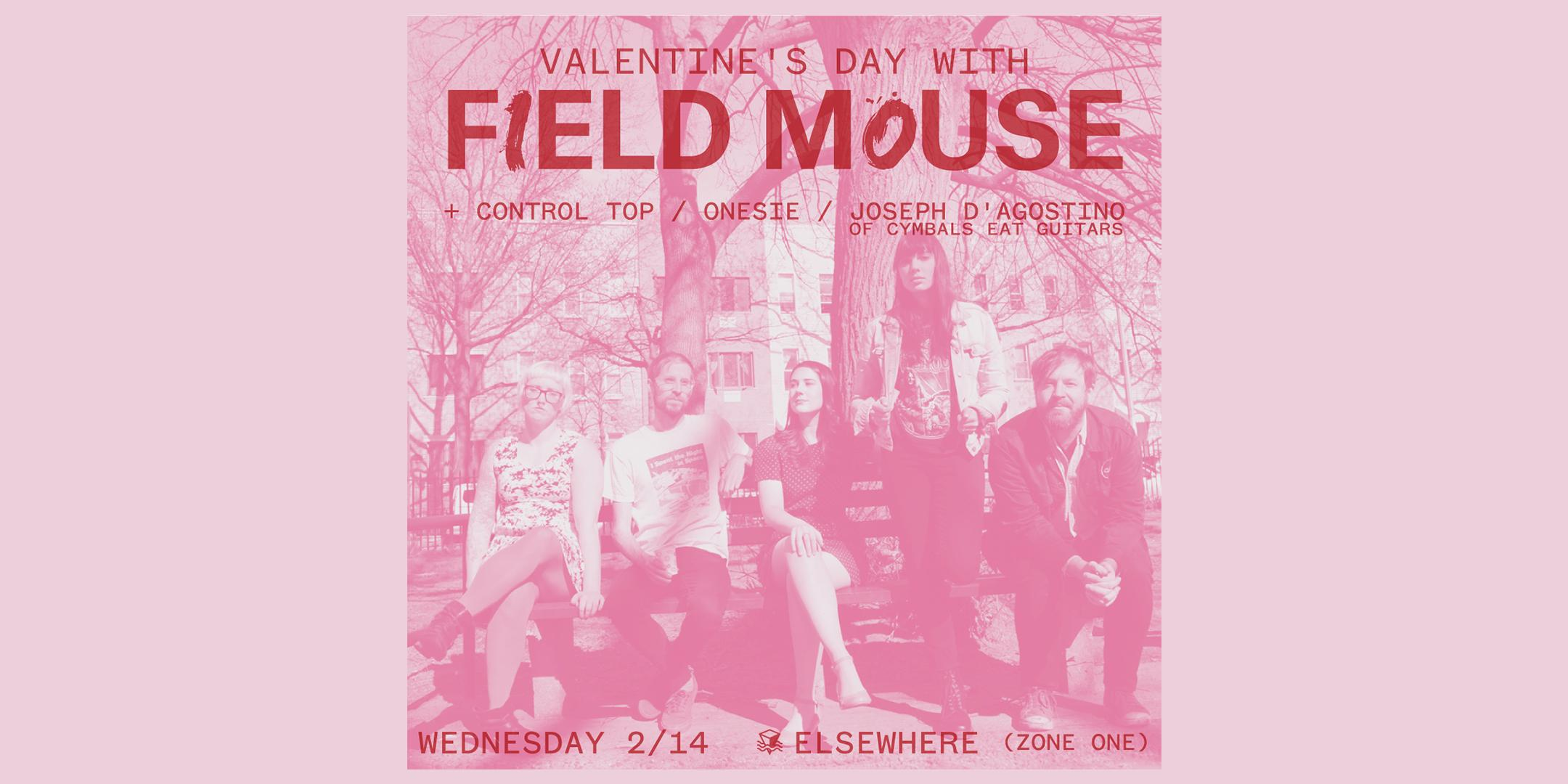 Valentine's Day with Field Mouse