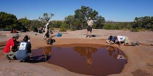 Utah Master Naturalist Desert Explorations Course -...