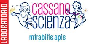 Laboratorio - MIRABILIS APIS