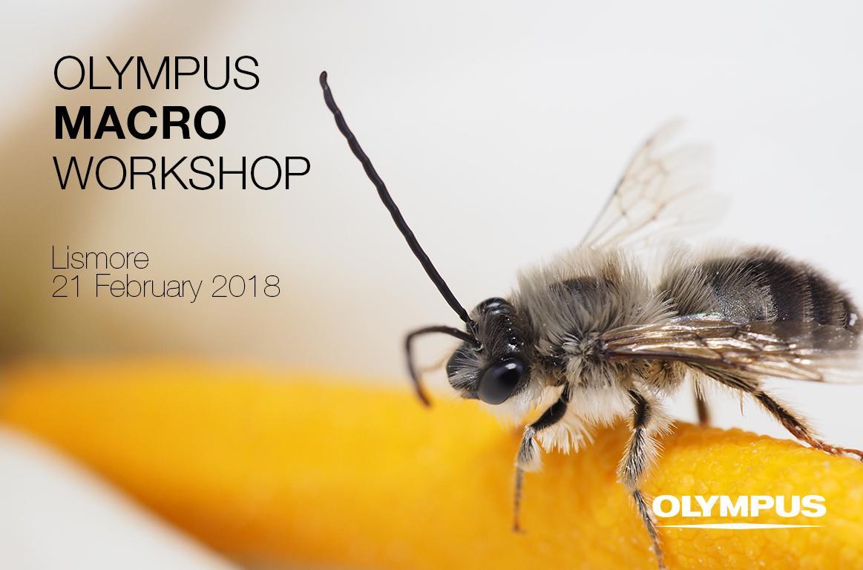 Olympus Macro Workshop